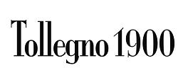 pittifilati_tollegno1900_logo